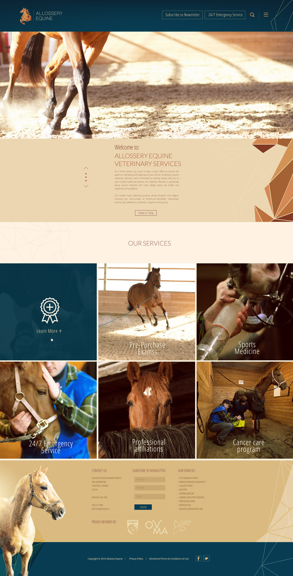 AEQUINE_HomePage_Website